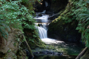 willaby creek falls