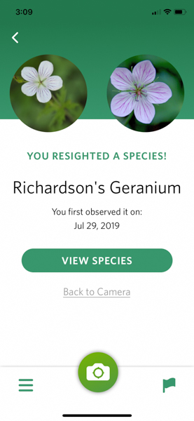 Screen shot using Seek app