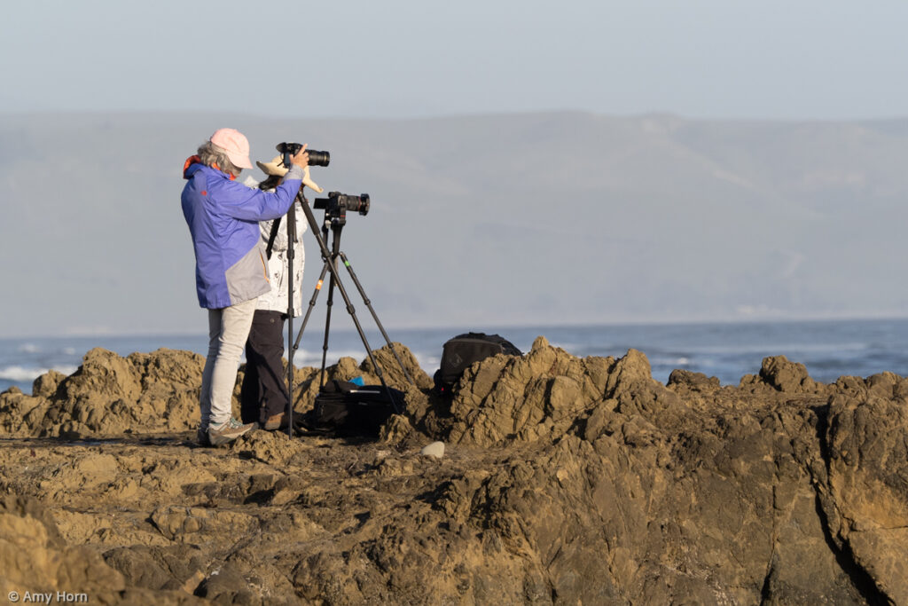 Photographers at Morro Bay Women's Photography Workshop